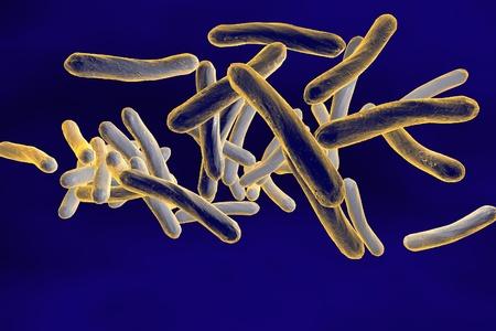 enteric: Three-dimensional drawing of Mycobacterium tuberculosis, Escherichia coli, Salmonella, Enterobacter, Citrobacter, Enterobacteriaceae, enteric bacteria, realistic illustration of microbes