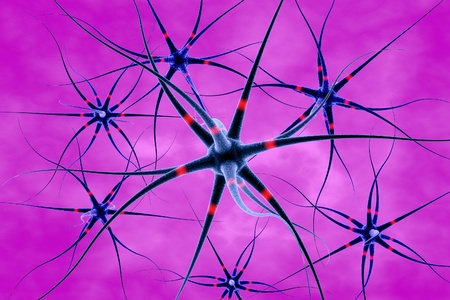 nerve cell: 3D illustration of neurons on colorful background, model of nervous cells, brain cells, background with neuron, nerve cell, brain cell, scientific background, medical background, healthcare background