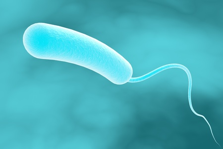 medical fight: Three-dimensional drawing of Vibrio cholerae, model of bacteria, realistic illustration of microbes, microorganisms, bacterium which causes cholera