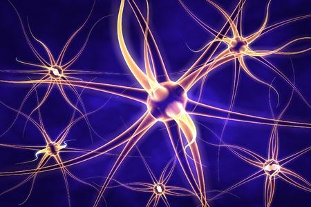 neurona: Ilustración digital de la neurona, modelo del celular nervioso, las células del cerebro, de fondo con las neuronas, las células nerviosas, las células del cerebro, formación científica, antecedentes médicos, marco sanitario