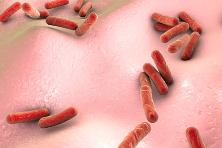 sepsis: Bacteria on surface of skin, mucous membrane or intestine, model of Escherichia coli, Salmonella, Klebsiella, Legionella, Mycobacterium tuberculosis, model of microbes, simulating electron microscope