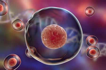 Menselijke of dierlijke cellen op een achtergrond met DNA Stockfoto
