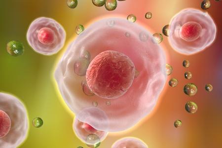 stem: Arrière-plan avec des cellules. Les cellules humaines ou animales sur fond coloré Banque d'images