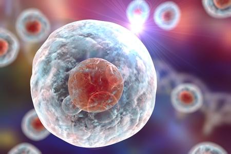 DNA가있는 배경에 인간 또는 동물 세포