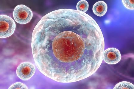 Menselijke of dierlijke cel op een achtergrond met DNA