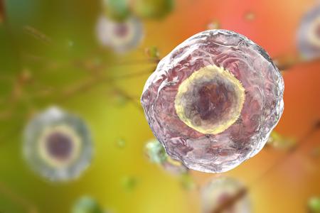 セルと背景。カラフルな背景に人間や動物の細胞