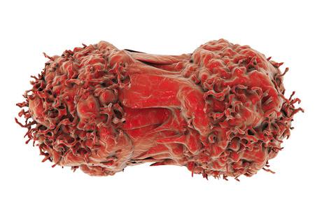 La división de las células cancerosas. La multiplicación de las células tumorales. ilustración 3D