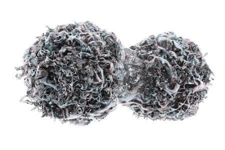 multiplication: Dividing cancer cells. Multiplication of tumor cells. 3D illustration