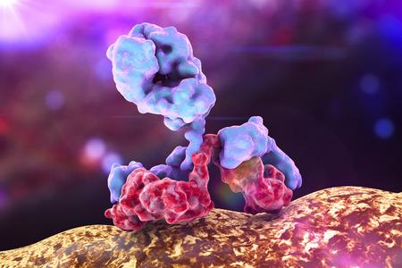 Antilichaam aanvallen bacterie op kleurrijke achtergrond. Immunoglobuline, 3d illustratie