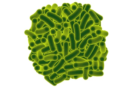 colitis: 3D illustration of rod-shaped bacteria isolated on white background. Realistic illustration of microbes