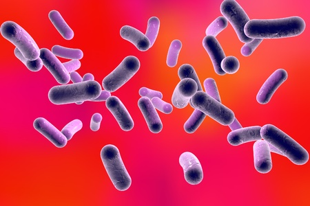 salmonella: 3D illustration of rod-shaped bacteria. Realistic illustration of microbes