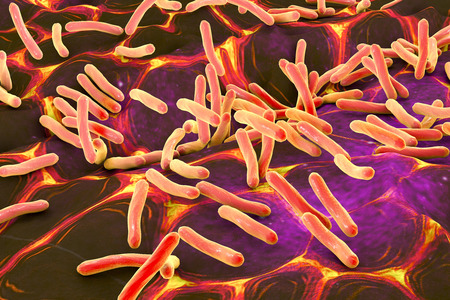 colitis: 3D illustration of rod-shaped bacteria. Realistic illustration of microbes