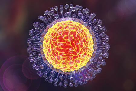 Zika virus, a virus which causes Zika fever found in Brazil. Illustration shows presence of inner protein core named capsid and outer lipoprotein envelope with spikes. 3D illustration Stock Photo