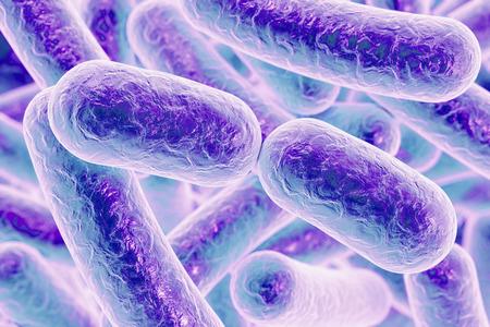 Bakterielle Infektion. Stäbchenförmige Bakterien, Nahaufnahme. 3D-Darstellung