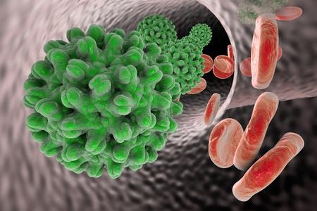 hepatitis b: Hepatitis B virus in blood vessel with red blood cells, 3D illustration Stock Photo