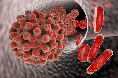Hepatitis B virus in blood vessel with red blood cells, 3D illustration Stock Photo