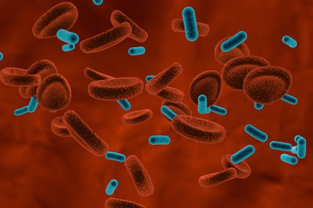 vibrio: View inside blood vessel in patient with bacteriemia. 3D illustration. Bacteria in blood Stock Photo