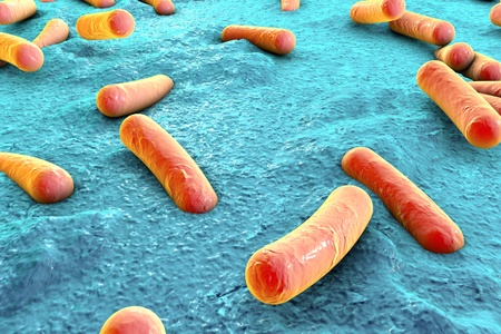 coli: Bacteria on surface of skin, mucous membrane or intestine, model of Escherichia coli, Salmonella, Mycobacterium tuberculosis, simulating electron microscope, 3D illustration Stock Photo