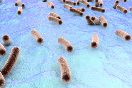 salmonella: Bacteria on surface of skin, mucous membrane or intestine, model of Escherichia coli, Salmonella, Mycobacterium tuberculosis, simulating electron microscope, 3D illustration Stock Photo