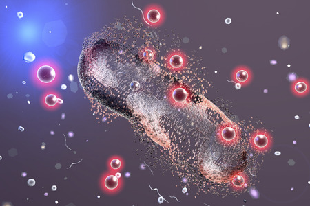 antibiotic: Destruction of a bacterium by silver nanoparticles, 3D illustration. An illustration can be also used to demonstrate action of any antibiotic substance or drug