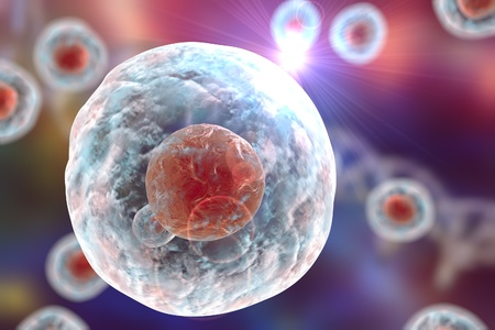 animal cell: Human or animal cell on a background with DNA, 3D illustration