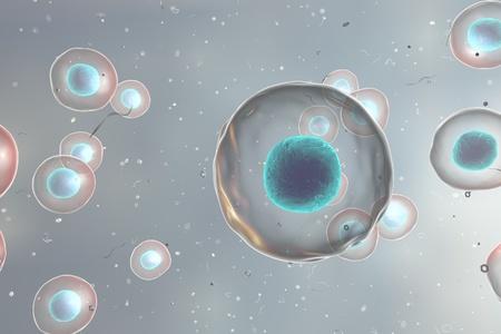 celulas humanas: Fondo con las células. Las células humanas o animales en colores de fondo, ilustración 3D