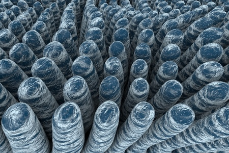 small bowel: Villi of small intestine, 3D illustration. Intestinal environment, close-up view