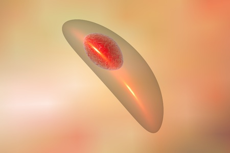 teratogenic: Toxoplasma gondii on colorful background. Protozoan which is transmitted from cats and other animals and causes toxoplasmosis especially dangerous for pregnant women. 3D illustration