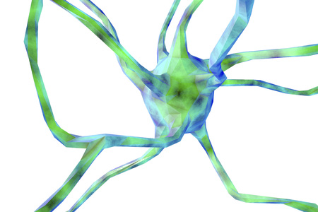 Low-polygonal neuron isolated on white background. 3D illustration