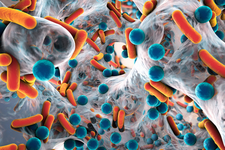Biofilm of antibiotic resistant bacteria. Rod-shaped and spherical bacteria. Escherichia coli, Pseudomonas, Mycobacterium tuberculosis, Klebsiella, Staphylococcus aureus, MRSA. 3D illustration Stock Photo