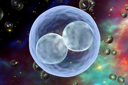 fertilization: Human embryo on space surrealistic background. 3D illustration.