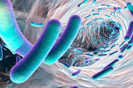 Biofilm van antibiotica-resistente bacteriën. Staafvormige bacteriën. Escherichia coli, Pseudomonas, Mycobacterium tuberculosis, Klebsiella. 3D illustratie Stockfoto