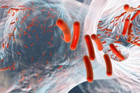 Biofilm of antibiotic resistant bacteria. Rod-shaped bacteria. Escherichia coli, Pseudomonas, Mycobacterium tuberculosis, Klebsiella. 3D illustration