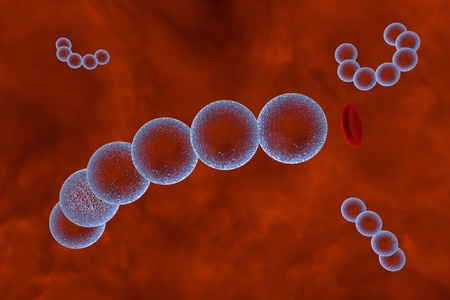 streptococcus: Bacteria Streptococcus, gram-positive spherical bacteria in blood. 3D illustration