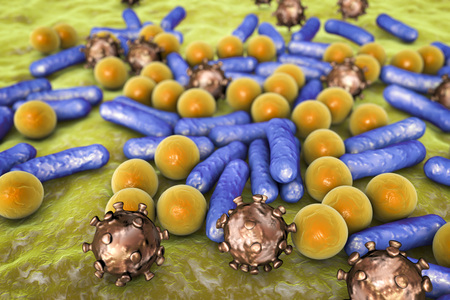 Microbes of different shapes. Rod-shaped and spherical bacteria and viruses isolated on white background. 3D illustratin