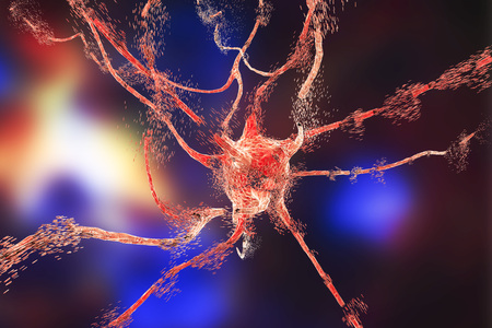 Apoptosis of neuron which is observed in different diseases, such as viral encephalitits, neurodegenerative diseases, psychiatric disorders, African trypanosomiasis, rabies and other. 3D illustration