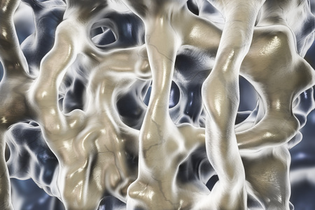 magnified image: Normal bone tissue, close-up view showing bone trabeculae. 3D illustration Stock Photo