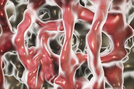 spongy: Normal bone tissue, close-up view showing bone trabeculae. 3D illustration Stock Photo
