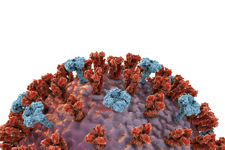 avian flu: Influenza virus on colorful background showing surface glycoprotein spikes hemagglutinin and neuraminidase. 3D illustration