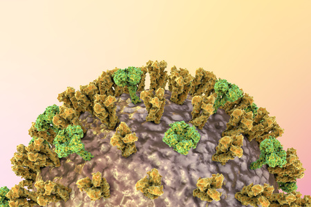 neuraminidase: Influenza virus on colorful background showing surface glycoprotein spikes hemagglutinin and neuraminidase. 3D illustration