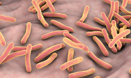 Mycobacterium tuberculosis bacteria inside human body, close-up view. 3D illustration Stock Photo