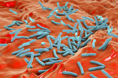 mycobacterium: Mycobacterium tuberculosis bacteria inside human body, close-up view. 3D illustration Stock Photo