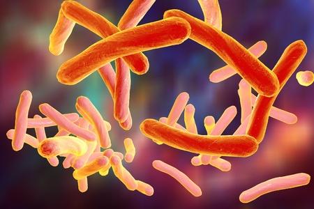 mycobacterium tuberculosis: Bacteria which cause tuberculosis Mycobacterium tuberculosis, 3D illustration
