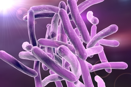 mycobacterium: Bacteria which cause tuberculosis Mycobacterium tuberculosis, 3D illustration