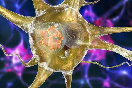 Rabies viruses, orange in neuron. Intracytoplasmic inclusion called Negri body used in diagnostics, 3D illustration Stock Illustration - 66214144