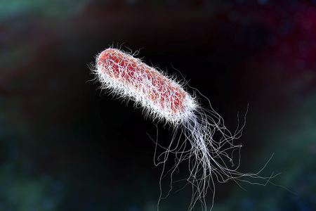 pili: Bacterium Pseudomonas aeruginosa on colorful background, antibiotic-resistant nosocomial bacterium, 3D illustration. Illustration shows polar location of flagella and presence of pili on the bacterial surface