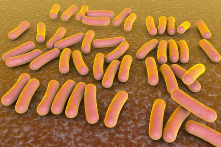 Bacterium Pseudomonas aeruginosa, antibiotic-resistant nosocomial bacterium, 3D illustration. Illustration shows polar location of flagella and presence of pili on the bacterial surface