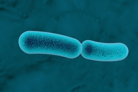 pneumoniae: Klebsiella bacteria, rod-shaped diplobacilli which cause pulmonary and other infections. 3D illustration