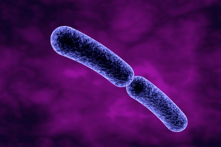 gastroenteritis: Klebsiella bacteria, rod-shaped diplobacilli which cause pulmonary and other infections. 3D illustration