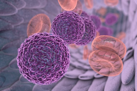 hemorrhagic: Dengue virus in blood. A virus which causes yellow fever and is transmitted by mosquitoes, 3D illustration